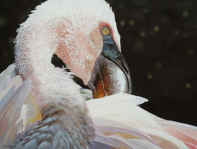 Flamingo05FIN00000001